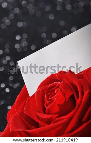 Red rose with white greeting card on black sparkle background