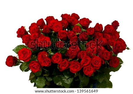 Red roses, a huge bouquet of flowers . - stock photo
