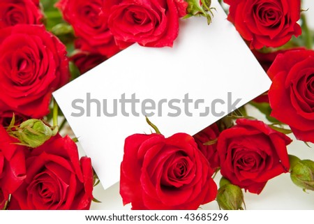 Red roses and a blank invitation card - stock photo