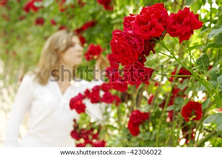 red roses and women on the background - stock photo