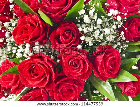 Red roses bouquet background - stock photo