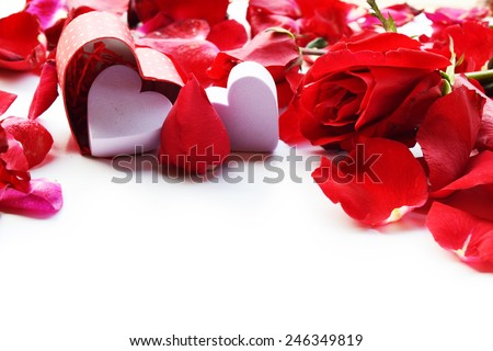 red roses for Valentine's Day - stock photo