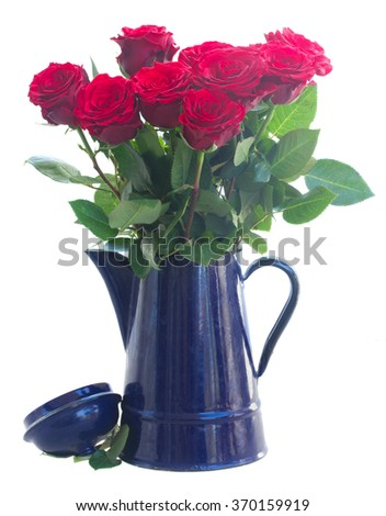 red roses in blue pot  isolated on white background - stock photo