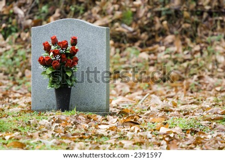 Red Roses in front of Gravestone - stock photo