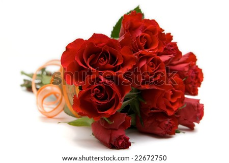 red roses isolated on white. space for text. - stock photo