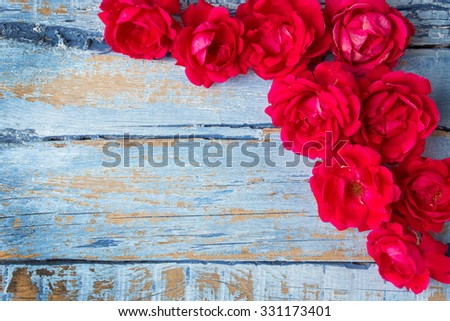 Red roses on blue wooden background - stock photo