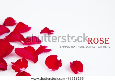 Red roses petals background - stock photo
