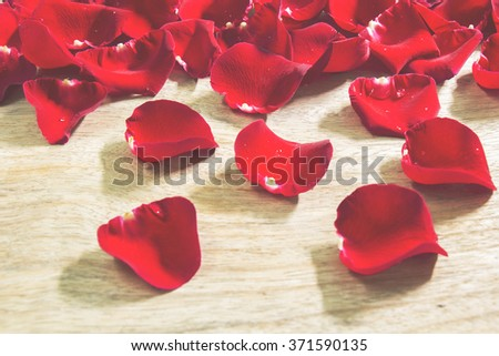 Red roses petals on wooden background.