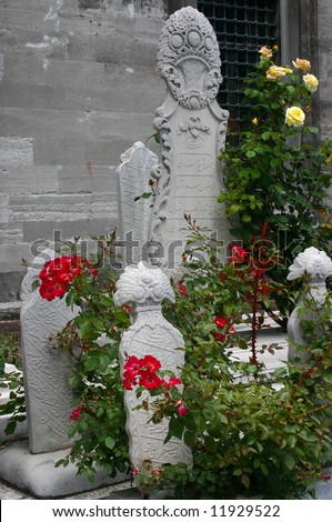 Red roses & tombstones, Islamic cemetery	Suleymanie Mosque	Istanbul	Turkey