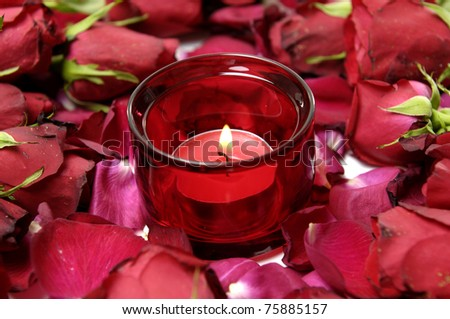 red roses with petals and romantic candle