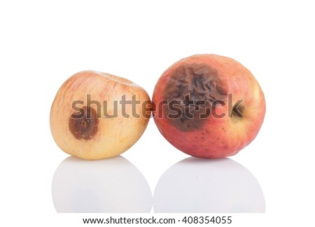 Red rotten apple on white background