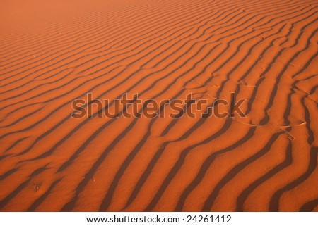 Red Sand of Sossuvlei.Namibia