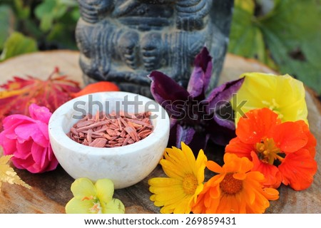 Red Sandalwood chips cut (santali rubri from Gabun) in a stone bowl ritual offering to the indian elephant god ganesha with different fall / autumn flowers and leaves (rose, calendula) in vivid colors - stock photo