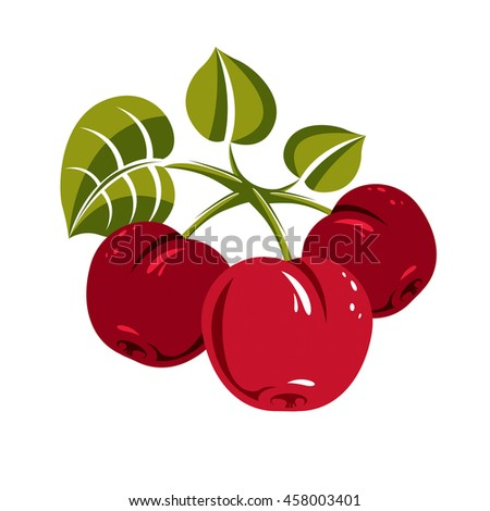 Red simple cherries with green leaves, ripe sweet berries illustration. Healthy and organic food, harvest season symbol.  - stock photo