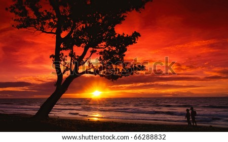 Red sky in sunset - stock photo