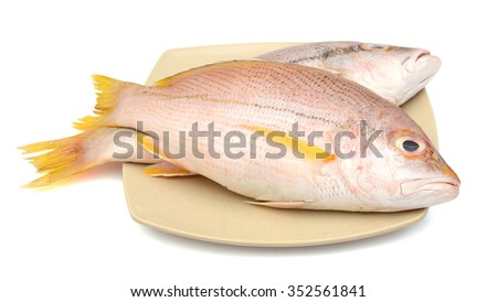 red snapper fish on plate isolated on white  - stock photo