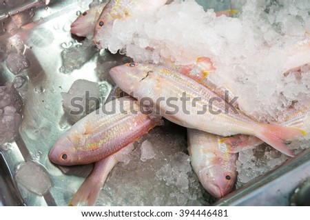Red snapper in market - stock photo