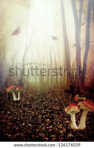 Red spotted mushrooms in a tale forest,fantasy picture - stock photo