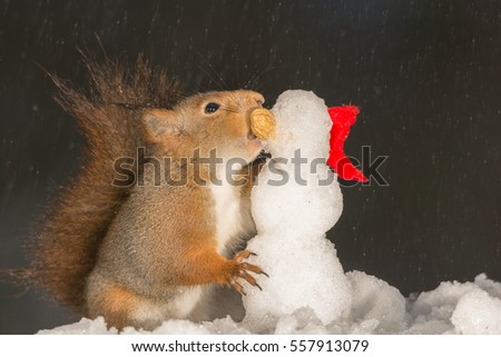red squirrels holding  a snowman standing on ice in the rain