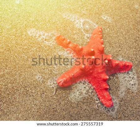Red starfish and sea wave - stock photo
