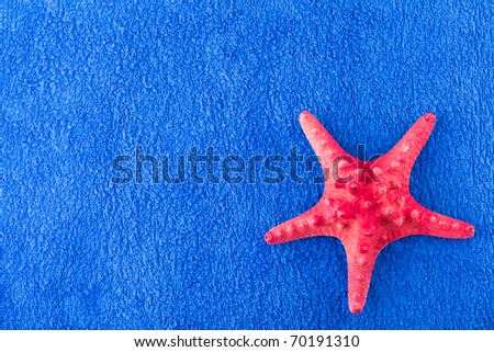 Red starfish on blue towel, room for copy space - stock photo
