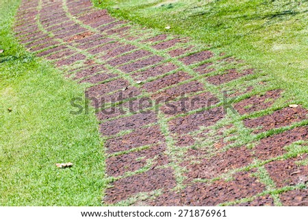 red stone block walk path in the garden with green grass - stock photo