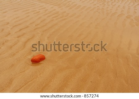 Red stone on beach - stock photo