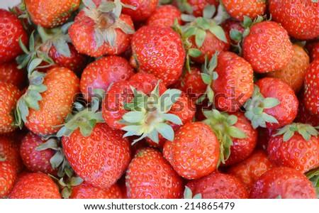 Red strawberries - stock photo