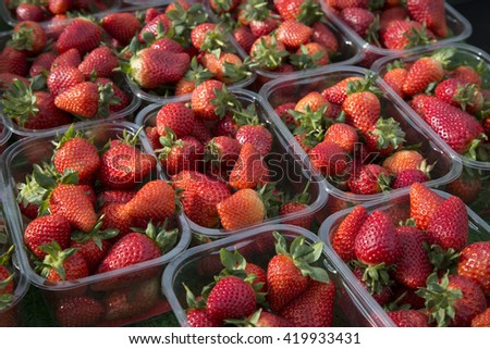 Red Strawberries on Market Stall