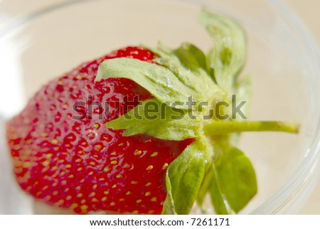 red strawberry on  table,  close up - stock photo