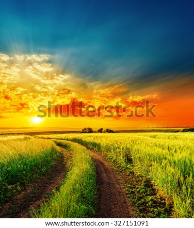 red sunset over green field with road - stock photo