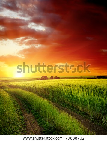 red sunset over rural road near green field - stock photo