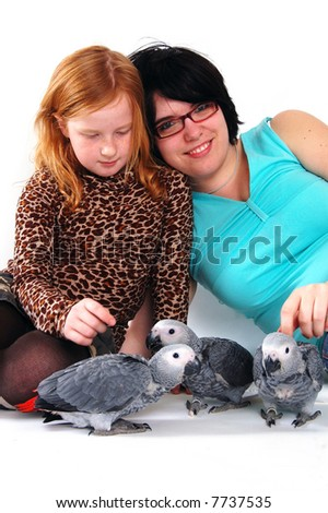 red tale parrot isolated on white with female and girl