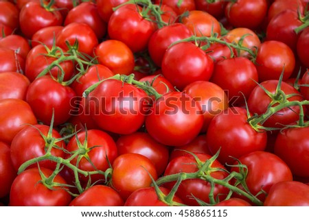 red tomato background - raw tomatoes closeup