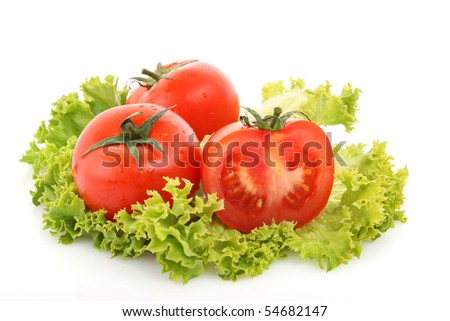 red tomato  vegetables   on the green salad  background