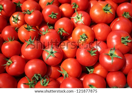 red tomatoes at the market - stock photo