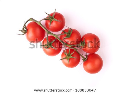 Red tomatoes on a vine isolated on a white background. - stock photo