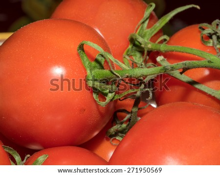 Red tomatos on a vine in white painted bowl. - stock photo