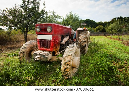 Red tractor in grass in an orchard