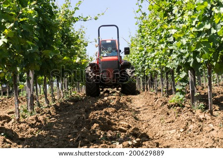 Red tractor spraying vineyard in sunny day - stock photo