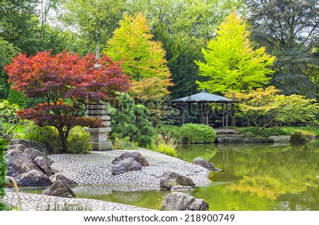 Red tree near the green pond in Japanese garden in Bonn, Germany - stock photo