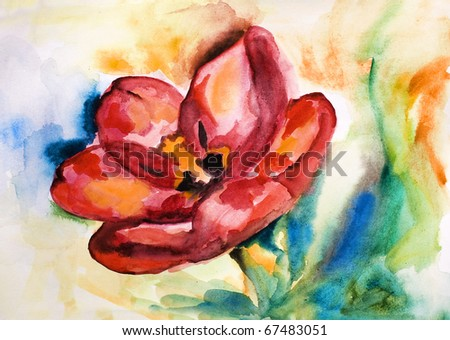 red tulip drawn by water color color on a water color paper - stock photo