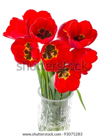 red tulips bouquet in vase