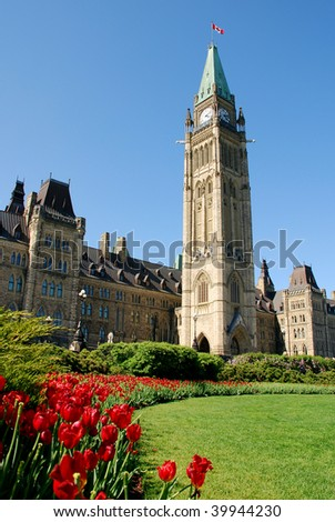 Red Tulips in bloom during the Tulip Festival in Ottawa. This is taken in front of the Peace Tower on Parliament Hill. - stock photo