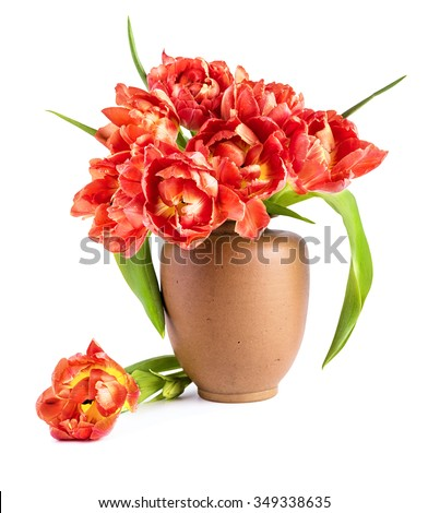 Red tulips in clay vase on white background. Greeting card or design element for Mother's day or any other spring celebration. Space for your text - stock photo