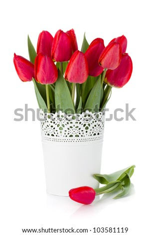 Red tulips in flowerpot. Isolated on white background - stock photo