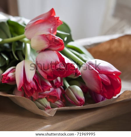 red tulips in paper lying on chair in kitchen - stock photo