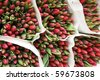 Red tulips on a market in Holland - stock photo