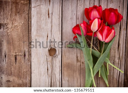 Red tulips on an antique wooden background - stock photo