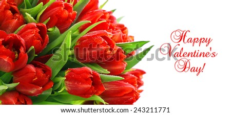 red tulips with water drops. spring flowers. card concept with sample text Happy Valentine's Day! - stock photo